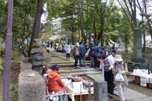 円覚寺に続く参道