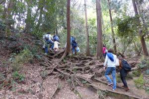 源氏山に登る途中