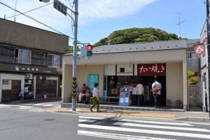 鎌倉文学館「バラまつり2014」