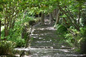 石段が続く先にバラ園と文学館が