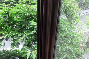 窓は吹き付けた雨で濡れています