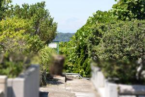小路の先には夏の黒い富士山