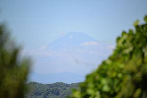 約75Km先の富士山に向かい