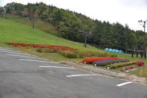 山麓駅の花壇