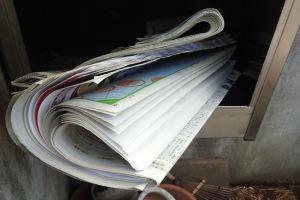 ポストに新聞をとりにいくと