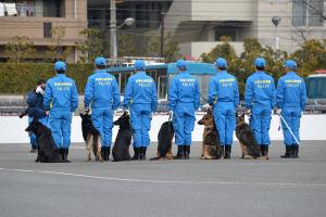 鑑識と警察犬も並びました