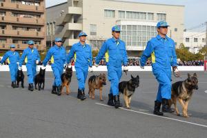 鑑識と警察犬も行進
