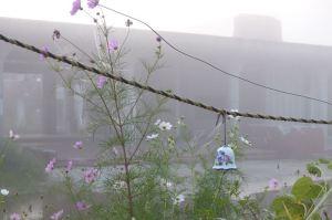 明け方到着した石巻 大川小学校