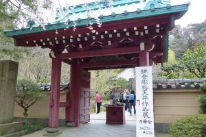 天井を伝統的工芸品の鎌倉彫で