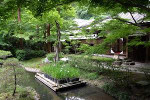 後庭園の池