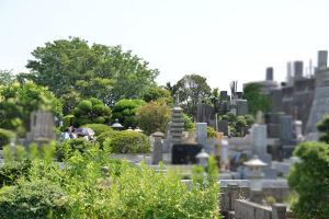 ひばりさんの墓前に人影がみえます