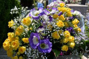 黄色のバラがきれいです