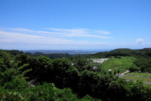 南には小田和湾