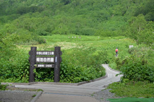 入口はミズバショウ湿原、標高1860m