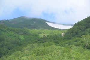 大きな雪渓がみえています