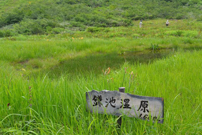 黒菱平 鎌池湿原