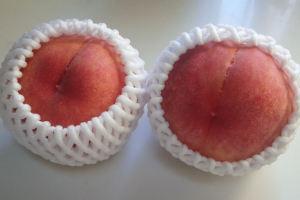 山梨の桃です
