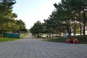 駐車場から海の公園へ