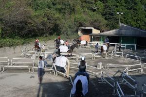 初めての乗馬体験