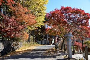 秩父・三峯神社の紅葉