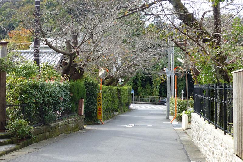 バス停「浄妙寺山門前」から100mほど
