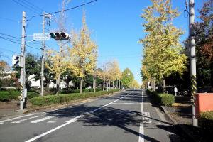 「並木中央駅」前の信号からの風景