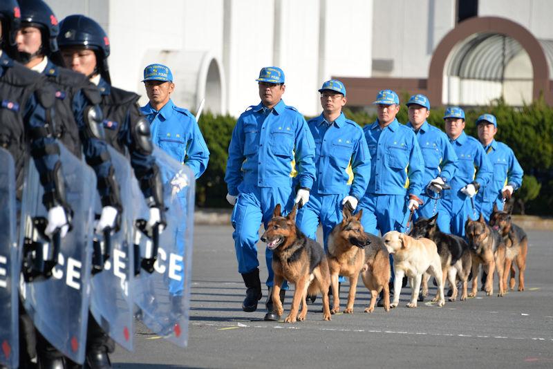 警察犬も6頭並んで