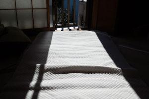 2階には暖かな春を思わす日が