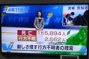 東日本大震災から4年11か月