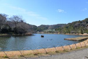 横浜 三渓園、梅をみてきました