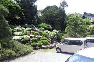庭園も手入れが行き届いて
