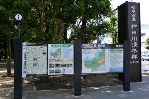 「柿田川湧水」へ向かいました