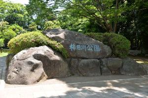 三島スカイウォーク~柿田川公園_4