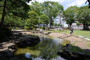 芝生広場にある池
