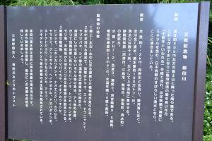 天然記念物 柿田川湧水の説明