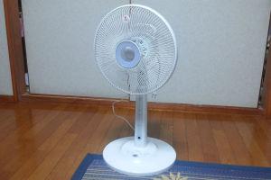 夏至で扇風機を出しました