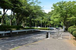 駐車場も広く整備されていました