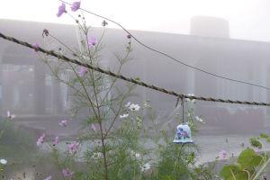 東日本大震災から5年4か月