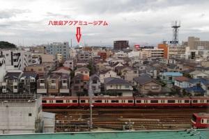 東側、八景島アクアミュージアムの屋根