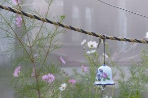 東日本大震災から5年8か月