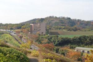 湘南国際村からの風景