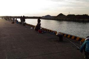 漁港では釣りをする人も