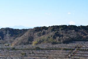 冬の富士山が遠くに見えています