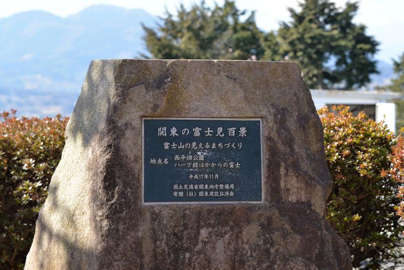関東の富士見百景に選ばれています