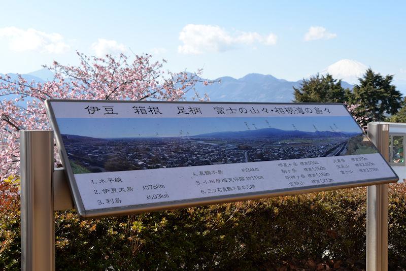 伊豆、箱根、足柄、富士の山々・相模湾の島々が一望