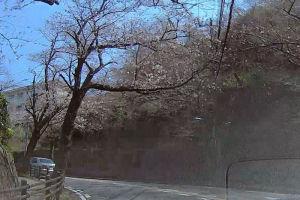 湘南国際村までの道のり