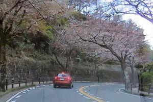 帰りの桜山の住宅街
