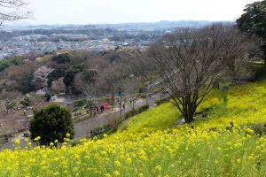 横浜市 金沢動物園