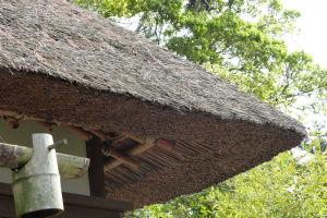 藁ぶき屋根が綺麗に整えられています