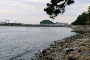 裏手には野島の海が広がっています